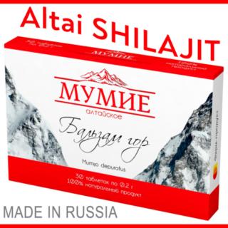 Mimijo Mumio Shilajit Altai мумиё / 실라짓 (200mg, 2x30, 120, 300 tablets)